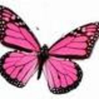 KelebekGibi