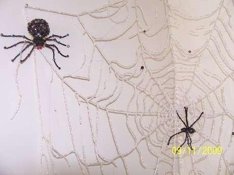 duvar süsü örümcek ağı
