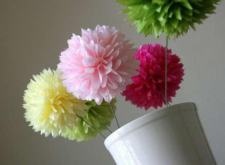 Bazıları saksıda çiçek gibi