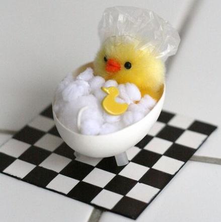 Yumurta kabuğundan yapılmış en güzel tasarımlar