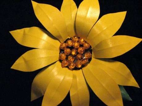 çiçek çeşitleri