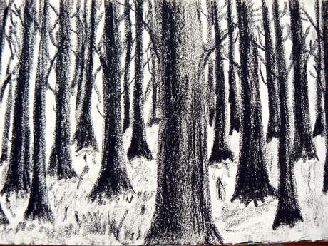 pastel çalışma-orman