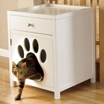 kedi evleri