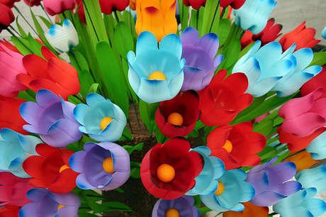 pet şişe - pet çiçekler