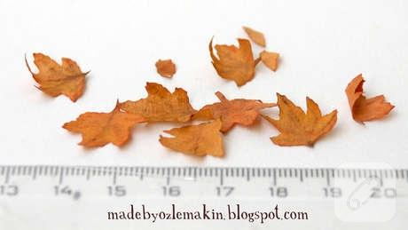 kavfe-filtresinden-minyatur-sonbahar-yapraklari