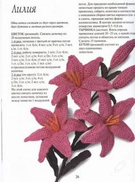 Örgü vazo çiçekleri