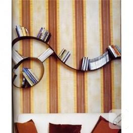 böyle kitaplıklar görmediniz