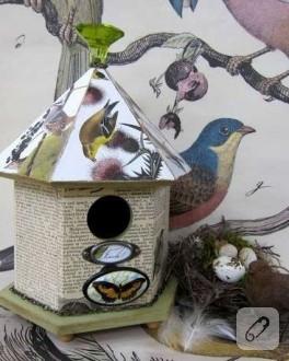 Kuş yuvaları ve kelebekler…