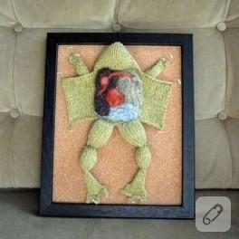 Ders : Biyoloji, Konu: Kurbağalar