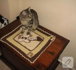 Kedi Battaniyesi