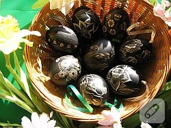Yumurtadan cicek yapimi…