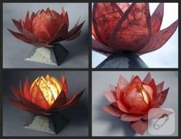 Lotus Çiçeği…