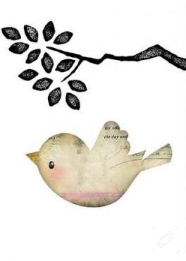 Kuşlu kolajlar…