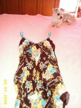 plaj elbisesi yaptım, ama evde de giyilebilir tiril tiril