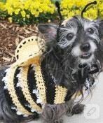 Arı mıyım, köpek miyim ben neyim?