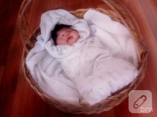fimo bebek