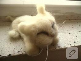 Keçe iğneleme yavru kedi