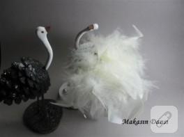 Kozalak kuğular