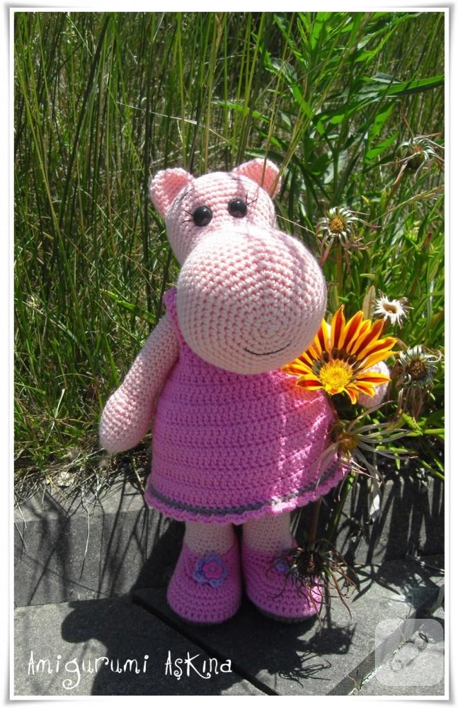 hippo (1)