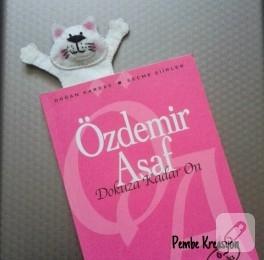 Kedili keçe kitap ayracı
