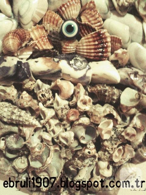 deniz-kabuklarindan-kalp-duvar-susu-1