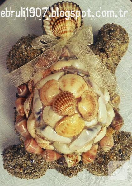 midyelerden-caretta-kaplumbaga-sus-1