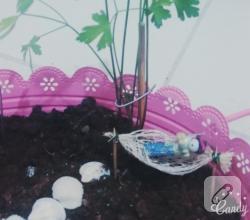 terrarium-ornekleri-kendin-yap-fikirleri