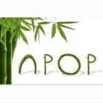 npopdesign'in profil fotoğrafı