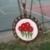 SEVİL ARSLAN'in profil fotoğrafı